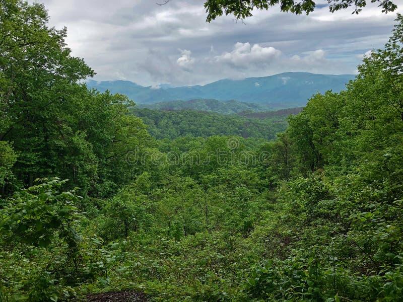 Paysage de montagne rentré le parc national de montagne fumeuse image stock