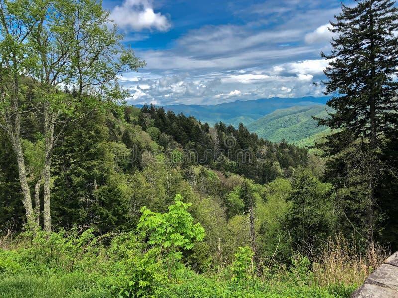 Paysage de montagne rentré le parc national de montagne fumeuse photo libre de droits