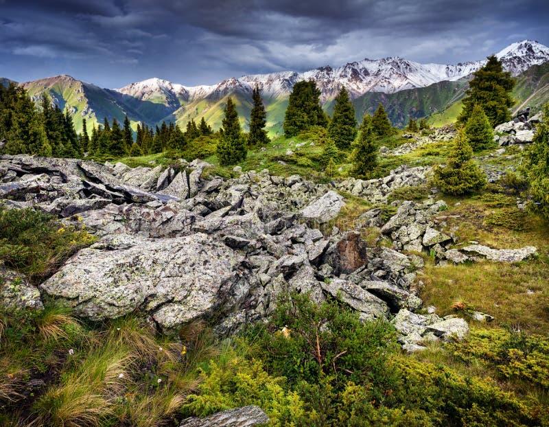 Paysage de montagnes photo stock