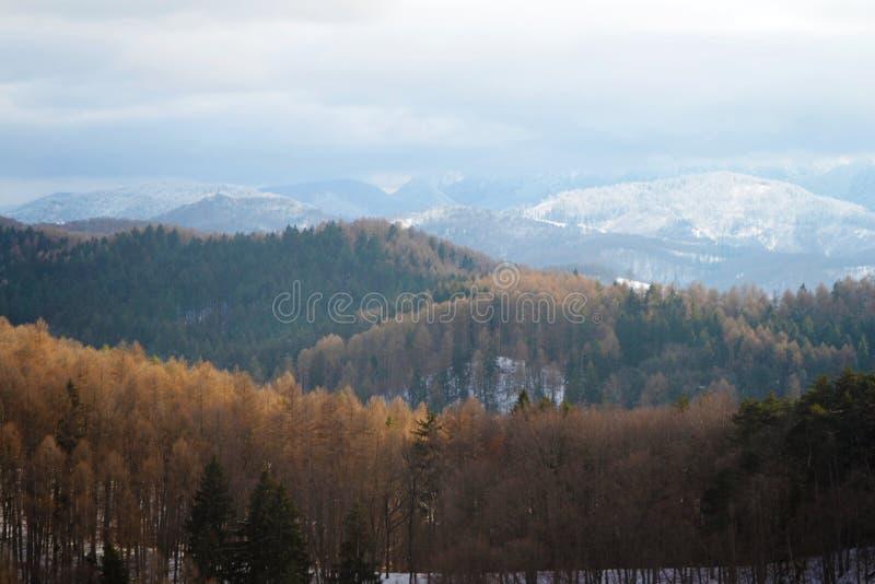 Paysage de montagnes de Bucegi image stock