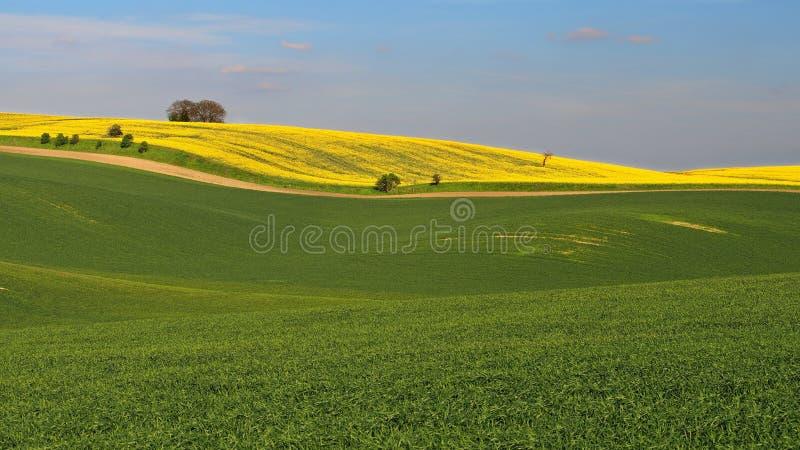 Paysage de Moravian Toscane, Moravie du sud, République Tchèque image libre de droits