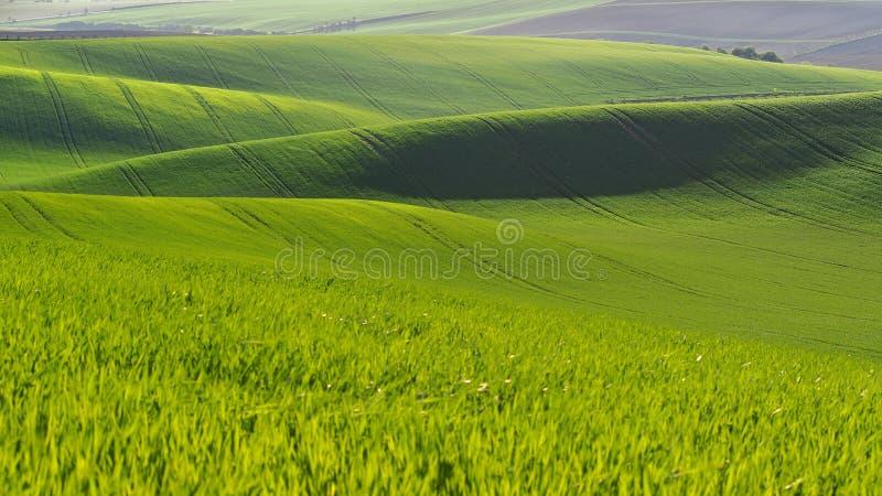 Paysage de Moravian Toscane, Moravie du sud, République Tchèque photos libres de droits