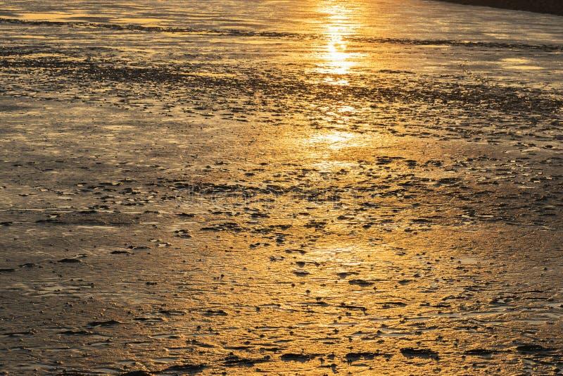 Paysage de Mudflat au coucher du soleil photo libre de droits