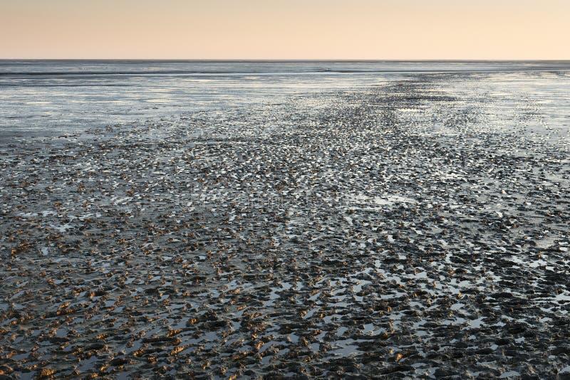Paysage de Mudflat au coucher du soleil image stock