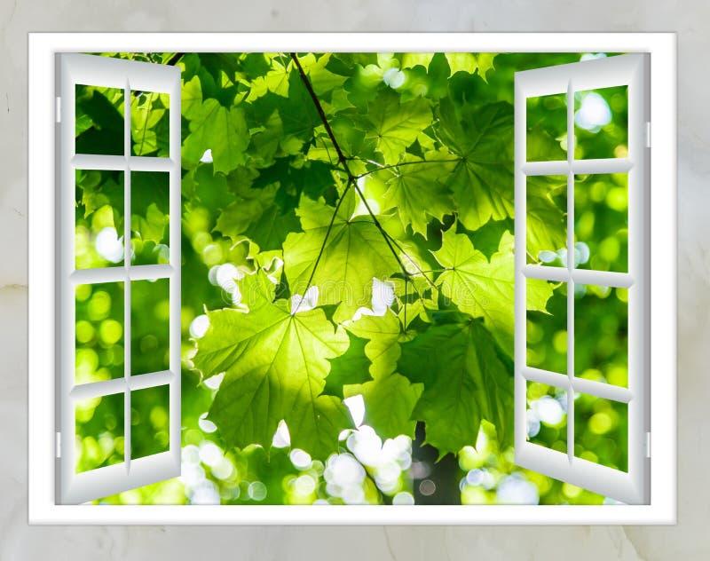 Paysage de nature avec la vue par la fenêtre photographie stock libre de droits