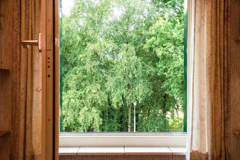 Paysage de nature avec une vue par une fenêtre avec les arbres verts photo libre de droits