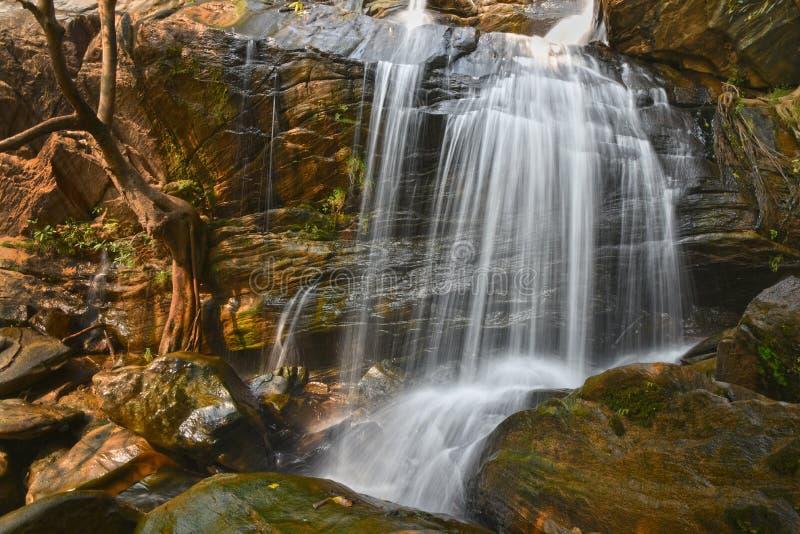 Paysage de nature de cascades photo libre de droits