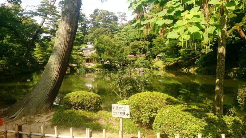 Paysage de nature de Tokyo Japon images libres de droits