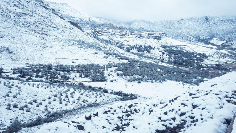 Paysage de neige de montagne image libre de droits
