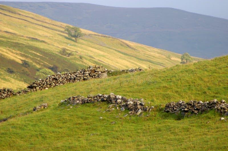 Paysage de North Yorkshire avec les murs de pierres sèches effondrés photo libre de droits