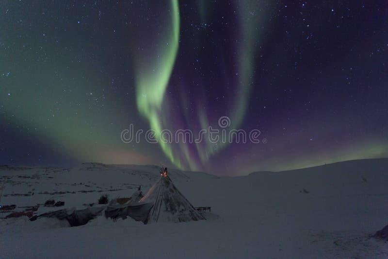 Paysage de nuit d'hiver avec des traîneaux photo stock