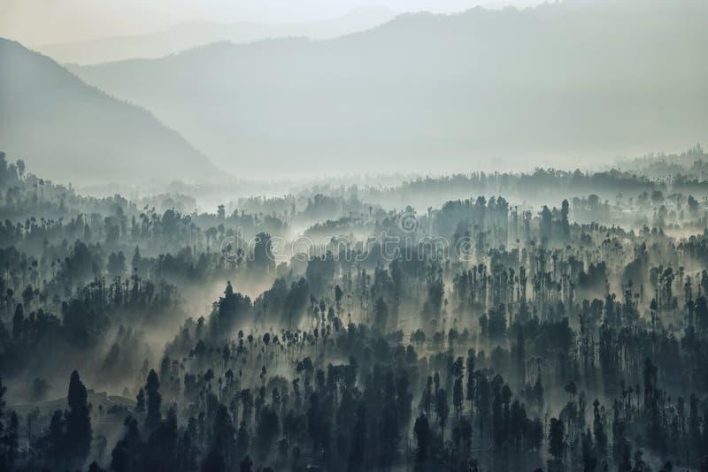 Paysage de parc national de Bromo pendant le matin image stock