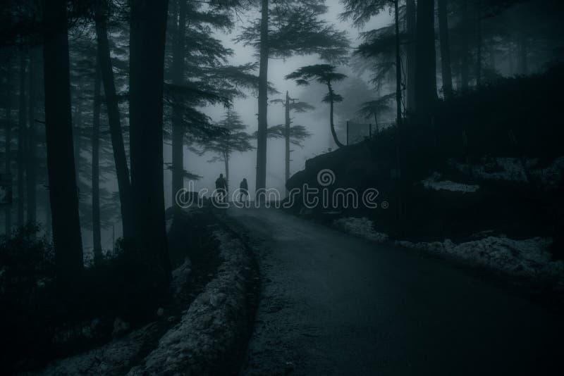 Paysage de Patnitop, Jammu, Inde photo stock