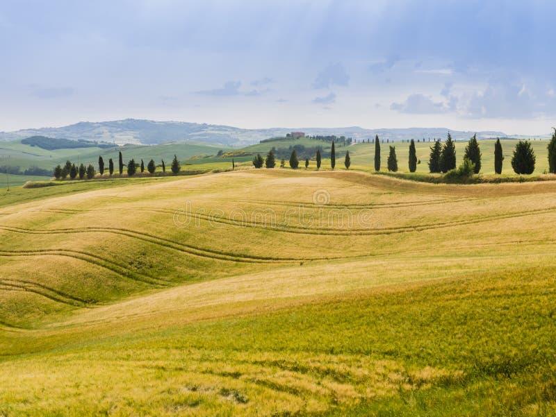 Paysage de pays dans les collines toscanes photo stock