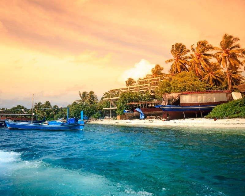 Paysage de plage tropicale d'île avec des palmiers image libre de droits