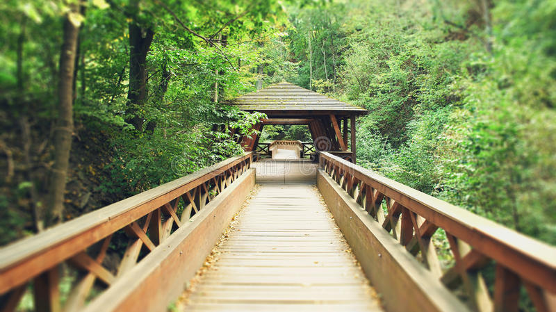 Paysage de pont en bois image stock