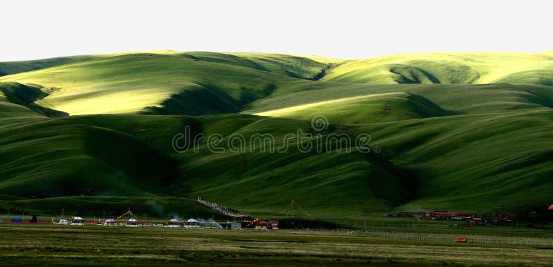 Paysage de prairie de tour d'ancêtre images libres de droits