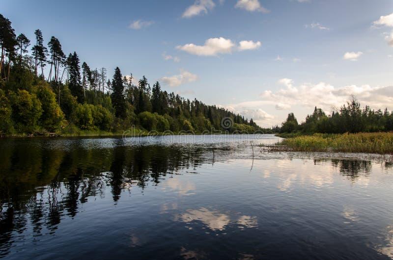 Paysage de région boisée photo libre de droits