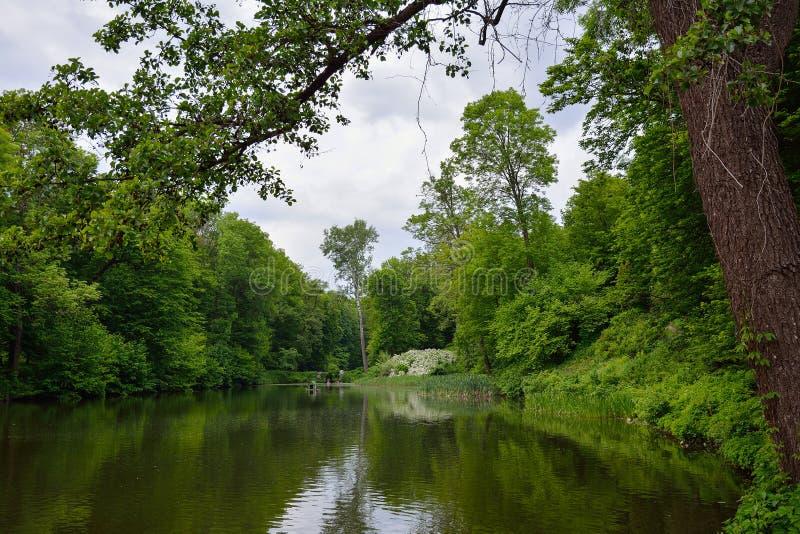 Paysage de ressort avec l'étang, l'herbe verte et les arbres Stationnement photos stock
