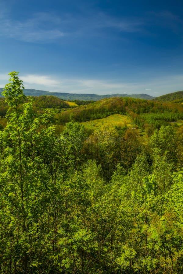 Paysage de ressort de la route express de collines image libre de droits