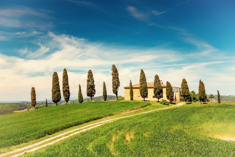 Paysage de ressort de la Toscane photographie stock