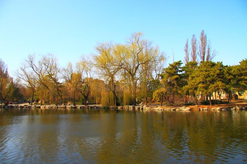 Paysage de ressort de Pékin images libres de droits