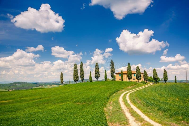 Paysage de ressort de la Toscane images stock