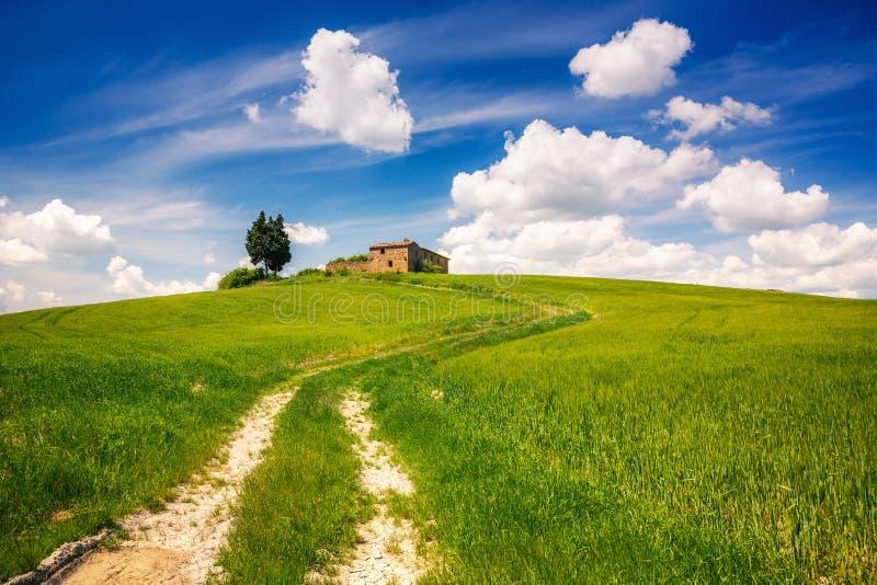 Paysage de ressort de la Toscane images libres de droits