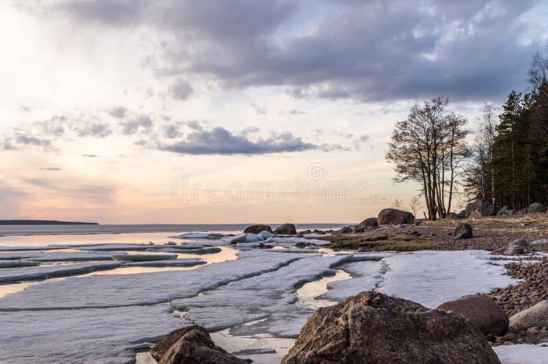 Paysage de rivage de lac d'hiver de coucher du soleil avec les pierres, la neige et la glace, arbres nus, ciel nuageux lac de lad photo libre de droits