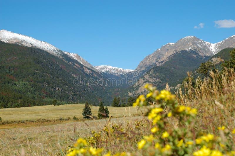 Paysage de Rocky Mountain de parc de moraine photographie stock