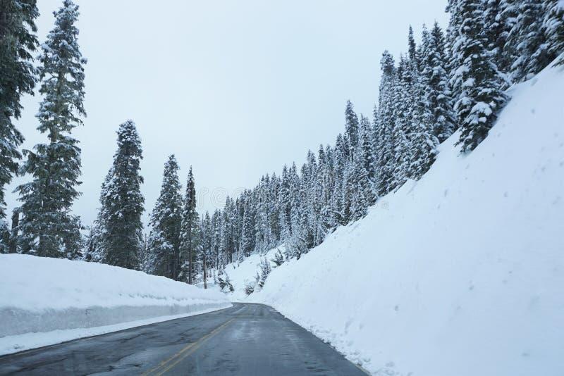 Paysage de route d'hiver photo stock