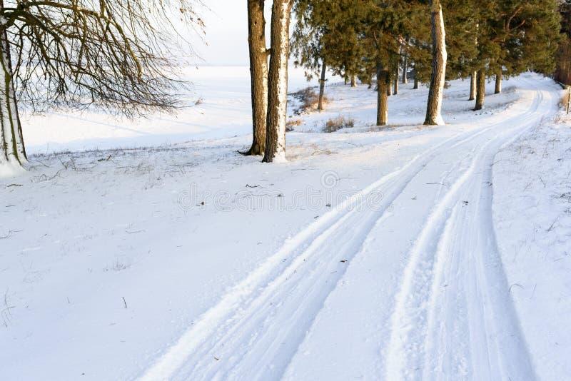 Paysage de route dans la forêt couverte par la neige Traces de voiture dans d images libres de droits