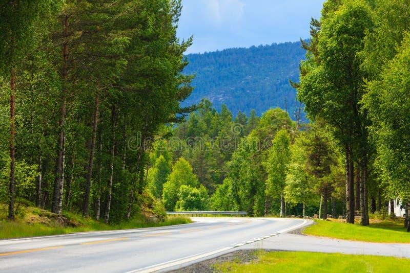 Paysage de route en montagnes norvégiennes image stock