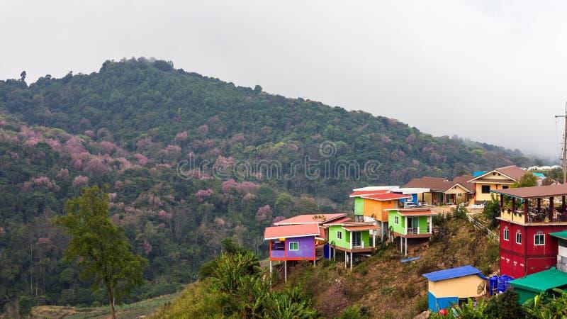 Paysage de ruine de plantation de station de vacances photo libre de droits
