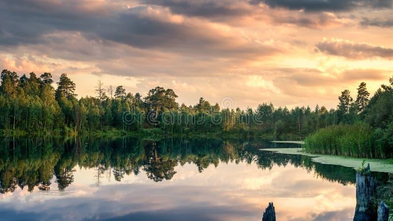 Paysage de soirée d'été avec le coucher du soleil rouge sur le lac Ural avec des pins sur le rivage, Russie, août photographie stock libre de droits