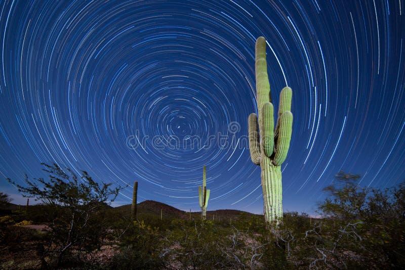 Paysage de Startrails Nightsky de cactus de Saguaro image libre de droits