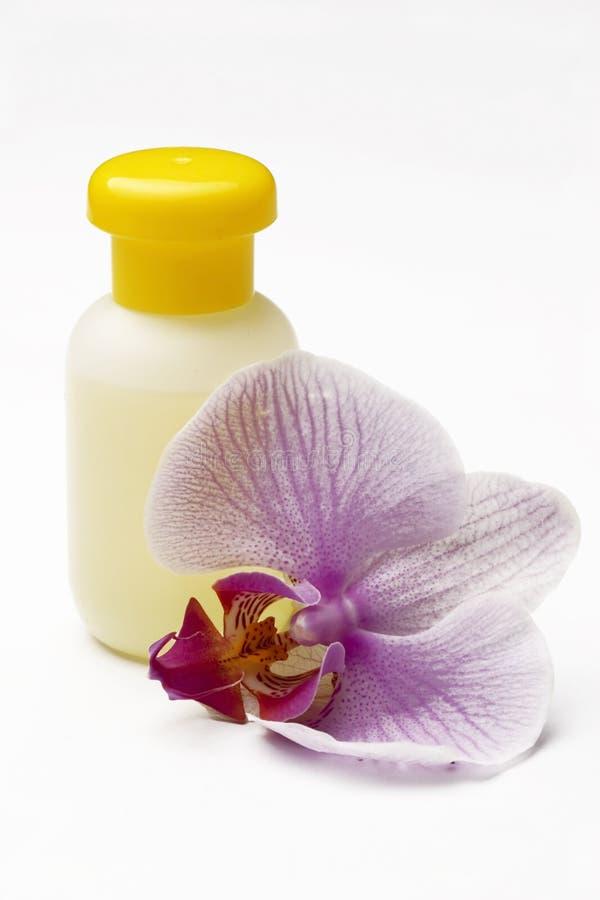Paysage de station thermale avec l'orchidée image stock