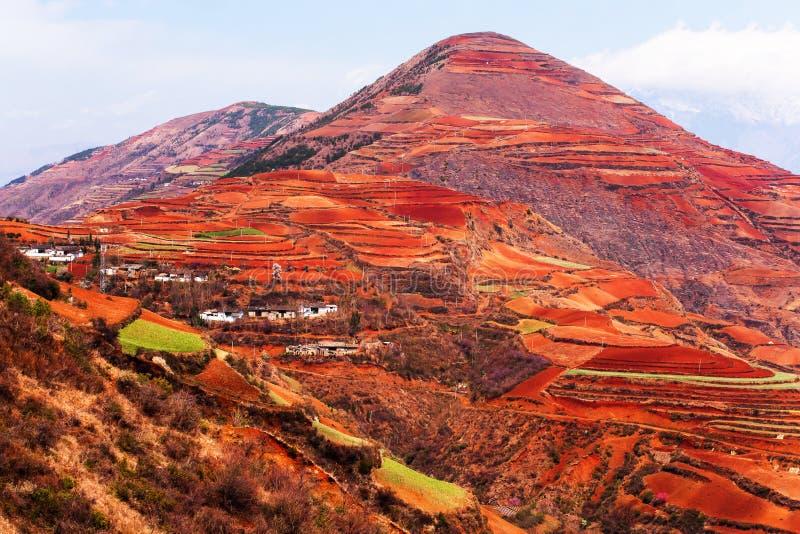 Paysage de paysage de stupéfaction des terrasses de blé et du village antique sur les hautes montagnes, «terre rouge» de Dongch photos stock