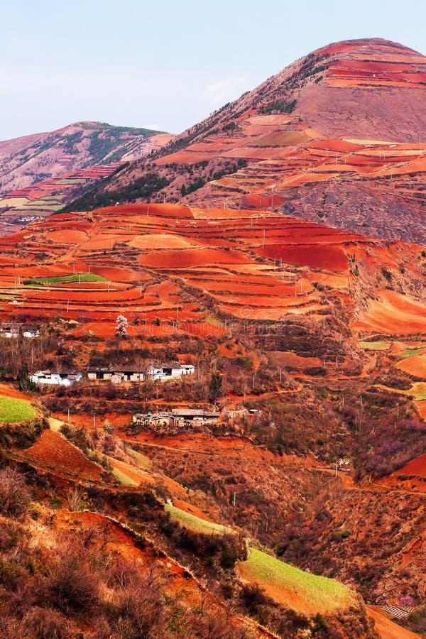 Paysage de paysage de stupéfaction des terrasses de blé et du village antique sur les hautes montagnes, «terre rouge» de Dongch images stock