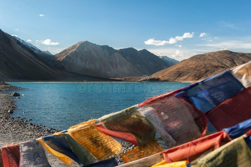 Paysage de TSO de douleur de montagne de l'Himalaya dans le ladakh, Inde de leh photo libre de droits