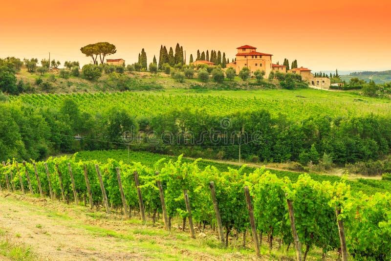 Paysage de vignoble de chianti avec la maison en pierre en Toscane images libres de droits
