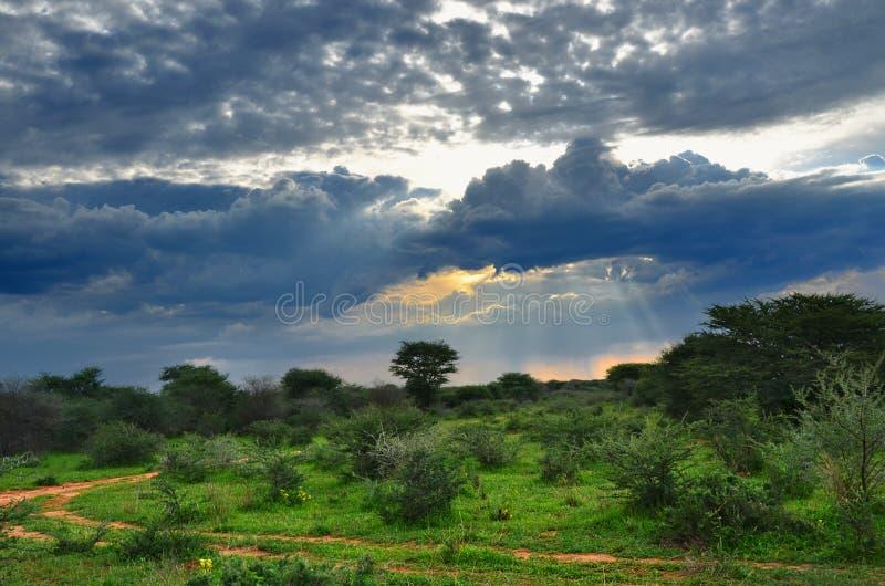 Paysage de Waterberg, Namibie, Afrique images libres de droits