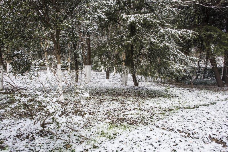 Paysage de Xiamafang après la neige photographie stock libre de droits