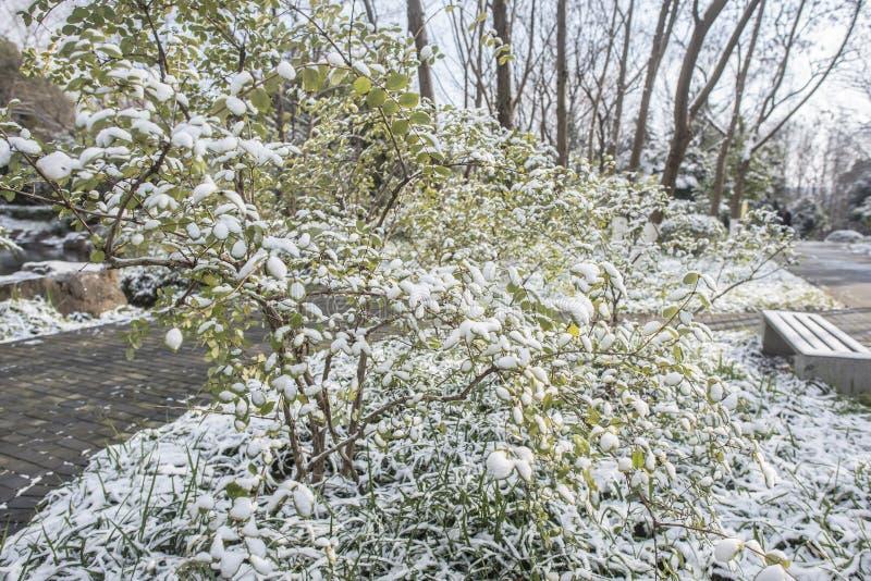 Paysage de Xiamafang après la neige photographie stock