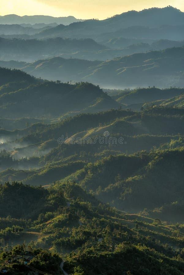 Paysage des forêts et de la nature de montagnes photographie stock libre de droits