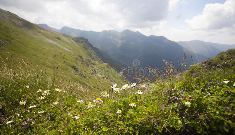 Paysage des montagnes de Fagaras en Roumanie photos libres de droits