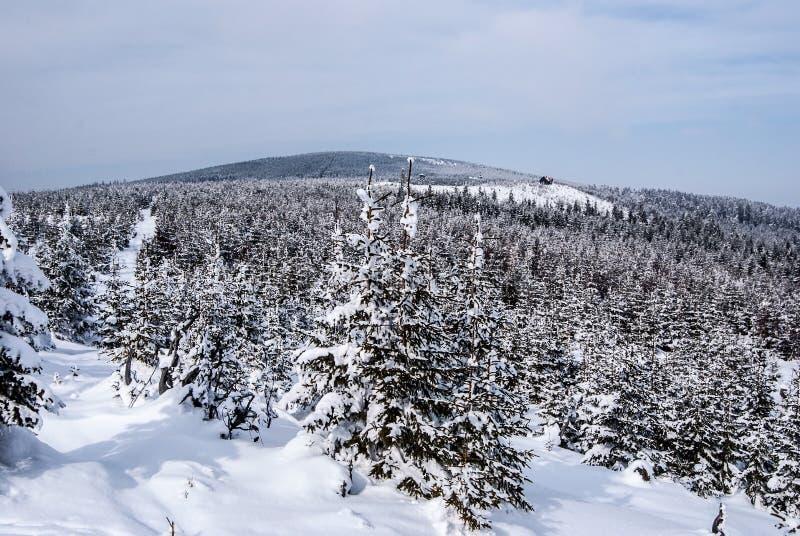 Paysage des montagnes de Jeseniky d'hiver dans la République Tchèque avec la colline d'Orlik photos stock
