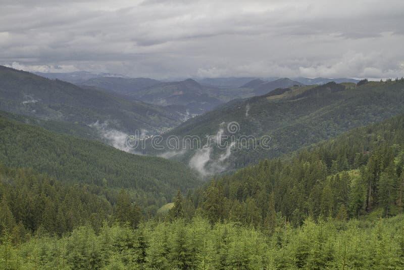 Paysage des montagnes de Rarau photos libres de droits