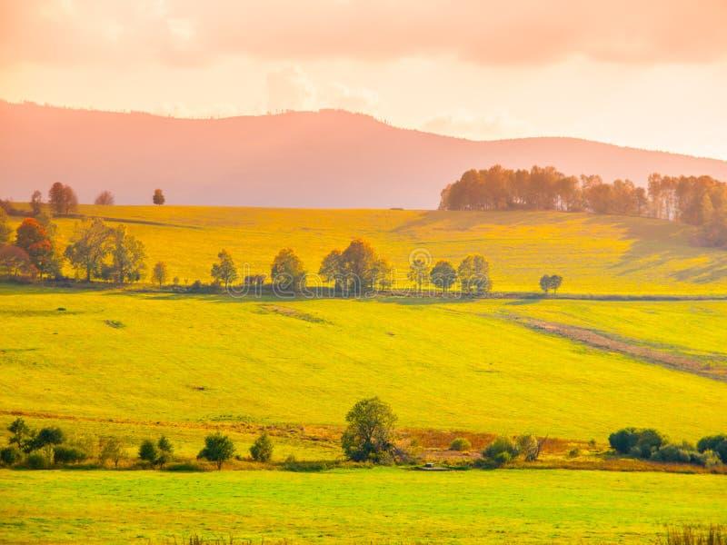 Paysage des prés de Sumava, Bohême du sud, République Tchèque photos libres de droits