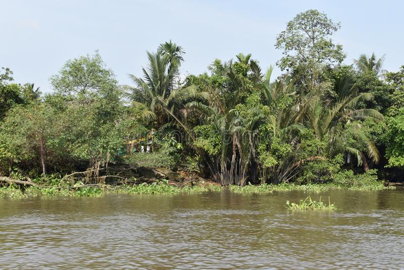 Paysage du beau paysage à la rivière de Saigon en Ho Chi Minh City, Vietnam, Asie photos libres de droits